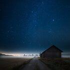 I walk alone by Mika Suutari
