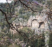 Wisteria Buds Surrounding the Lycian Tombs Dalyan by taiche