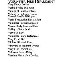 Volunteer Fire Department Photographic Print