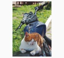 Ginger and White Tabby Cat Sunbathing on A Motorcycle One Piece - Short Sleeve