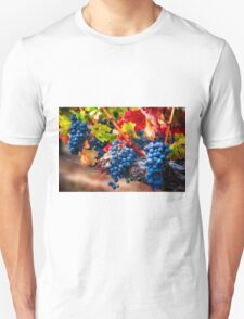 Fruit of Napa Valley I Unisex T-Shirt