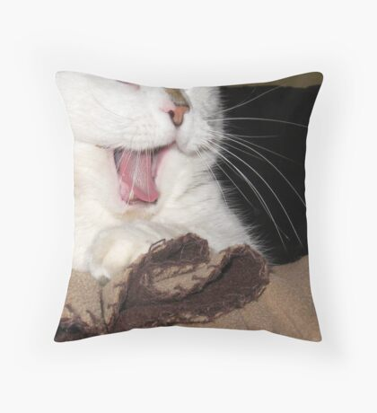 Smug Throw Pillow