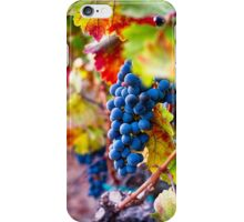 Fruit of Napa Valley II iPhone Case/Skin