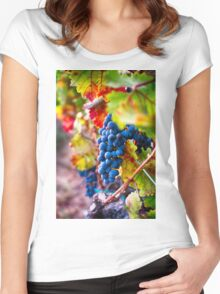 Fruit of Napa Valley II Women's Fitted Scoop T-Shirt