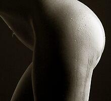 Moist Curves by Maxoperandi