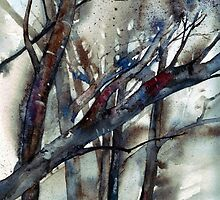 Winters Branches by Val Spayne