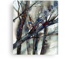 Winters Branches Canvas Print