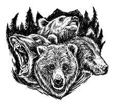 Four Bears by Jason Castillo