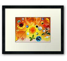 Plantes & Planetes Framed Print