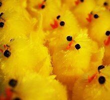 Chick Army by Anita Joy Holland