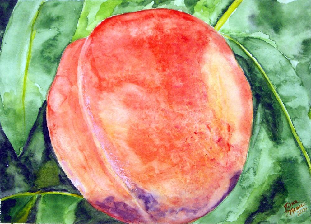 Peach Fuzz by Tina Messec by CoastalCarolina