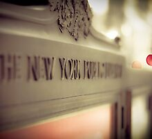 New York Public Library by RaceyTay