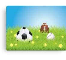 Egg Shaped Sport Balls 2 Canvas Print