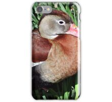The Whistling Duck iPhone Case/Skin