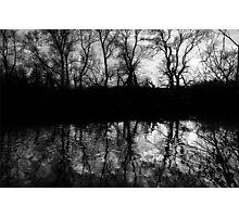 Silhouette of Tree's Photographic Print