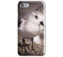 Common Sandpiper iPhone Case/Skin