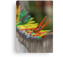 One in the Crowd Canvas Print