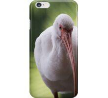 White Ibis iPhone Case/Skin
