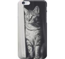 Sunlight black & white cat iPhone Case/Skin