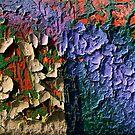 My Colored Lezard Skin by Etienne RUGGERI Artwork