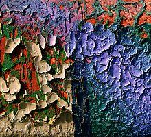 My Colored Lezard Skin by Etienne RUGGERI Artwork eRAW