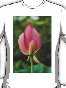 Lotus bud T-Shirt