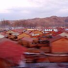 From the Train Window (1)  by Ethna Gillespie