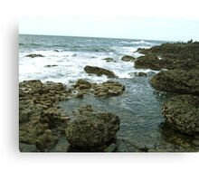 Giant's Causeway coast of Northern Ireland Canvas Print