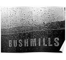Bush & Water Poster