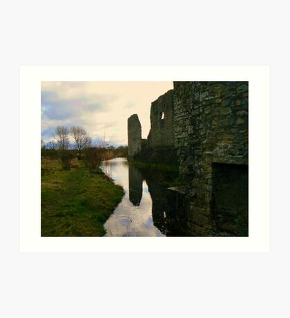 Trim Castle's grounds Art Print