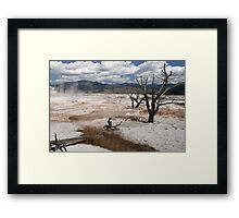 Dead Branches in the pools  of Mammoth Hot Springs, Yellowstone National Park, Wyoming, USA Framed Print