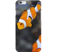 two clown fish iPhone Case/Skin