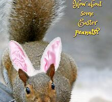 Hoppy Easter from the Easter Squirrel by WalnutHill