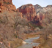 Zion National Park, Utah by cshphotos