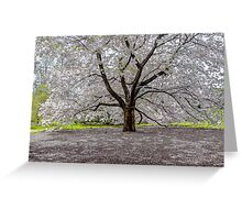 New York Botanical Gardens Greeting Card