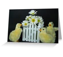 Quackers Greeting Card
