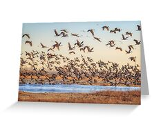 Morning Rising from the River Platte Greeting Card