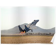 McDonnell Douglas  F-15  EAGLE  Poster