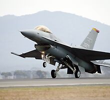 F-16  Fighting Falcon by aircraft-photos