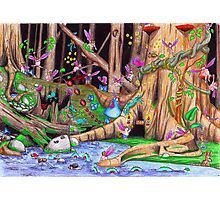 Creatures of the Rainforest Photographic Print