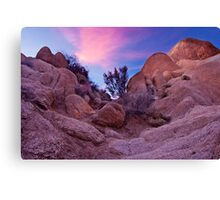 Dusk at Joshua Tree Canvas Print