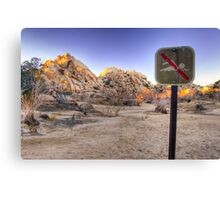 No Swimming in the Desert Canvas Print