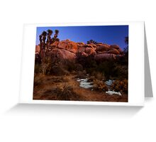 Last Light, Joshua Tree Greeting Card