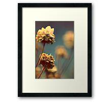 Indie Framed Print