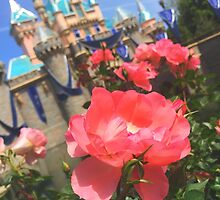 Disneyland's Sleeping Beauty Castle #8 by disneylandaily