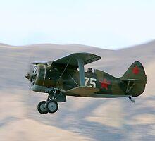 Polikarpov I-153 by aircraft-photos