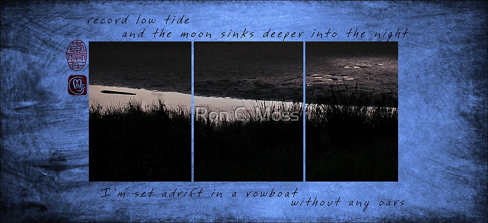 Record Low Tide by Ron C. Moss