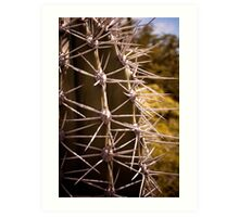 Prickled Art Print