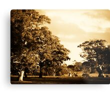 Sweeping Plains Metal Print