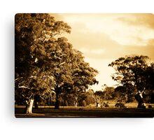 Sweeping Plains Canvas Print